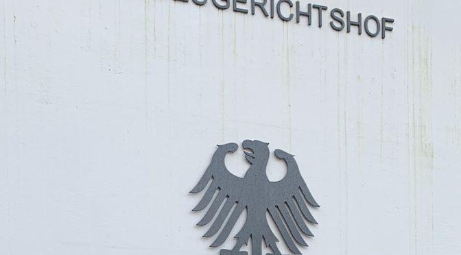 Der Berliner Zwillingsfall